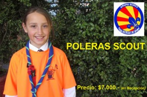 poleras scout2013